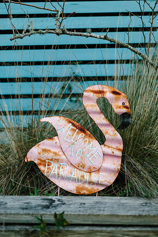 Rusty welcome to paradise sign on flamingo at resort by Matthew Spaulding for Stocksy United