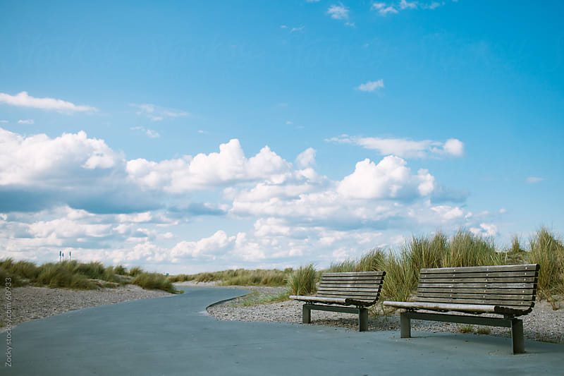 Benches at the beach by Zocky for Stocksy United