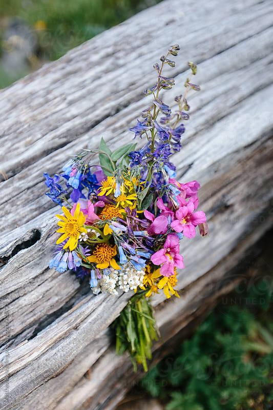 Bouquet of wild wildflowers on tree by Matthew Spaulding for Stocksy United