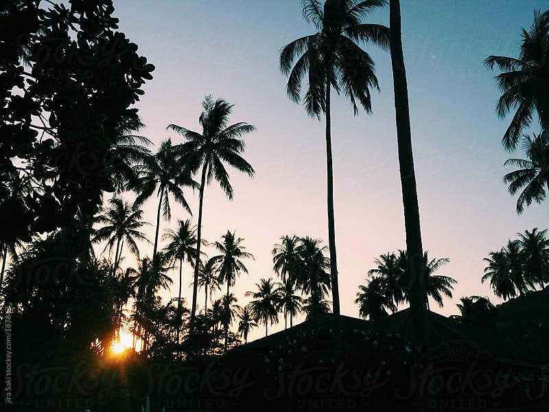sunset  by jira Saki for Stocksy United