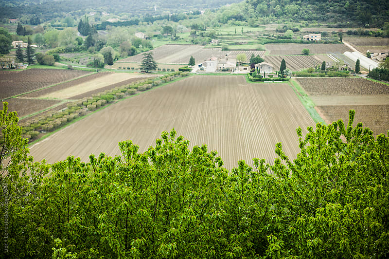View of plowed fields in a valley in Provence, France by Lior + Lone for Stocksy United