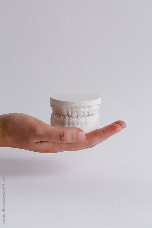 Hand holding plaster models of upper and lower teeth - vertical by Jacqui Miller for Stocksy United