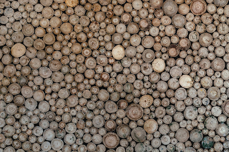 Wood pattern by Jovana Milanko for Stocksy United