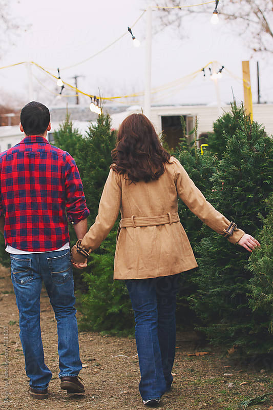 A couple search a Christmas tree lot for a Christmas tree by Tana Teel for Stocksy United