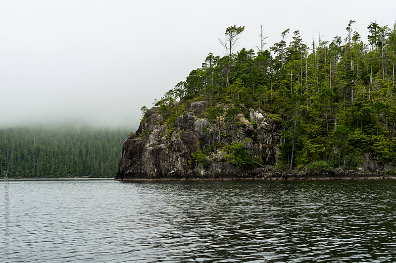 Foggy island in the pacific northwest by Richard Brown for Stocksy United