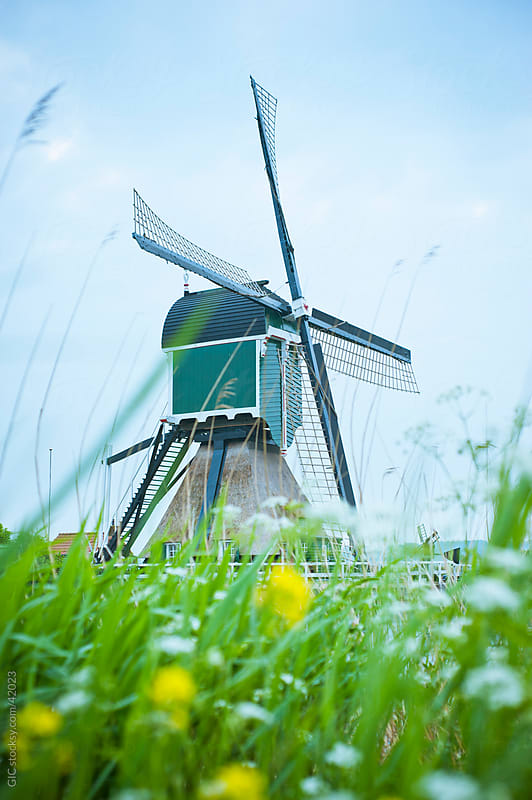 Traditional Dutch windmill in Holland by GIC for Stocksy United