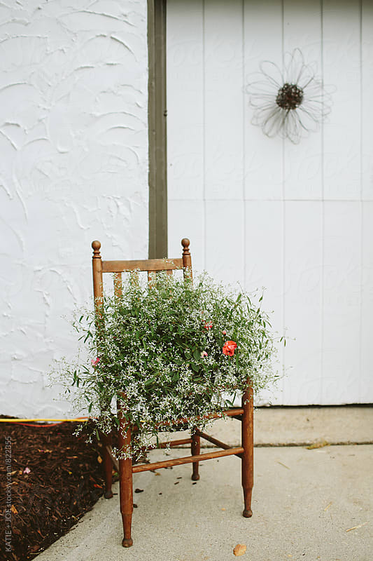 Plant in a Chair by KATIE + JOE for Stocksy United