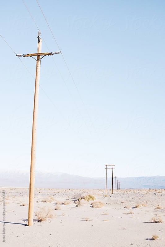 line of telephone poles in desert by Jesse Morrow for Stocksy United