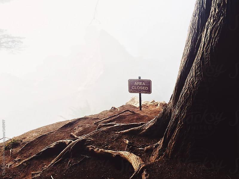 Big Sur Foggy Cliffs by Christian Gideon for Stocksy United