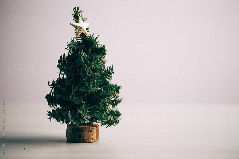 Little Christmass Tree by aaronbelford inc for Stocksy United