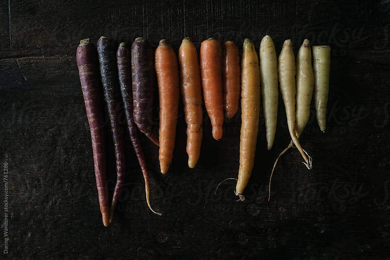 Harvest tricolor carrots on linen dish towel and dark wood table background by Daring Wanderer for Stocksy United