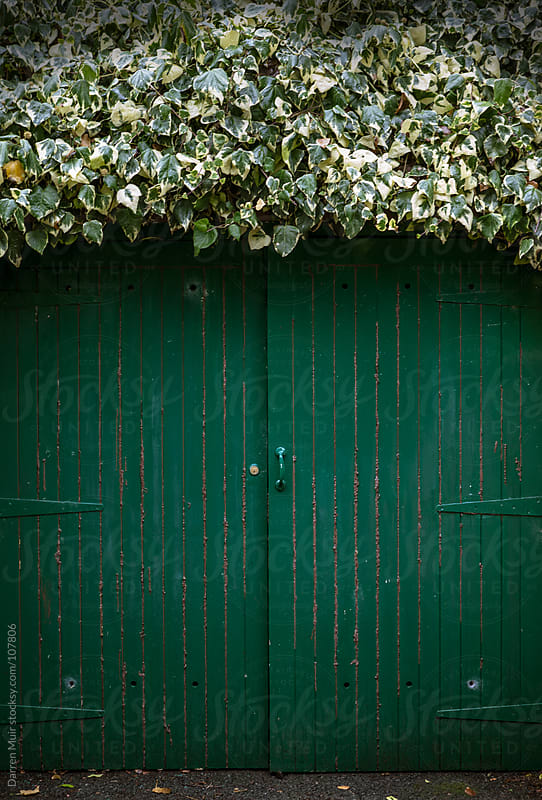 Leafy green door. by Darren Muir for Stocksy United