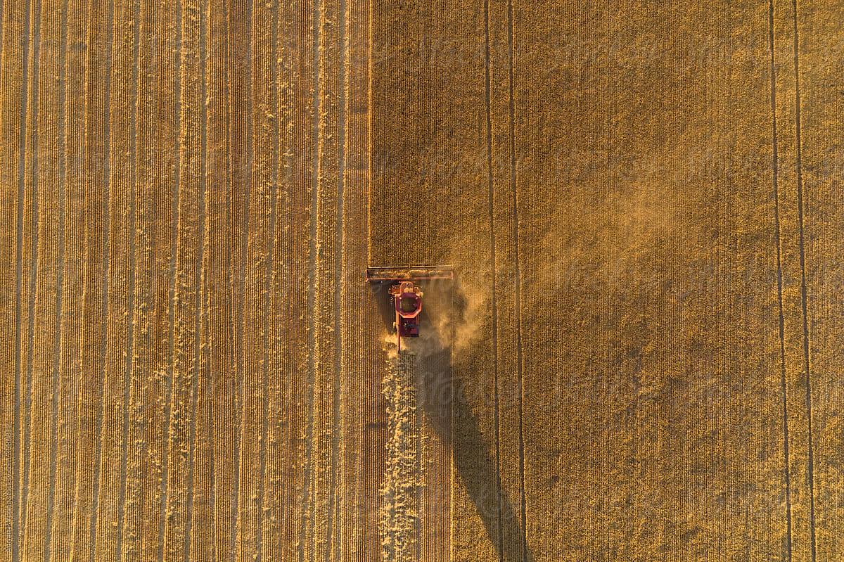 Header Harvest Crop Stock Photo