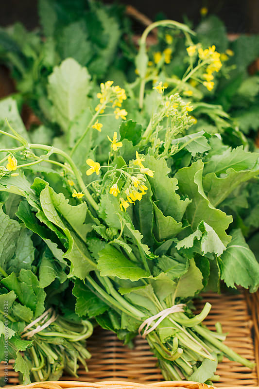 Bunches of fresh broccoli rabe in market by Kristin Duvall for Stocksy United