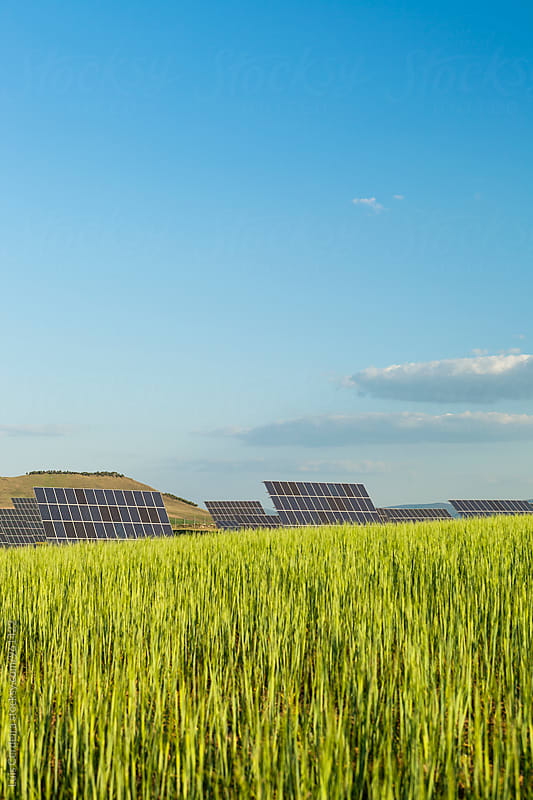 Solar power plant by Luis Cerdeira for Stocksy United