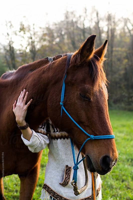 Woman caressing her affectionate horse by michela ravasio for Stocksy United