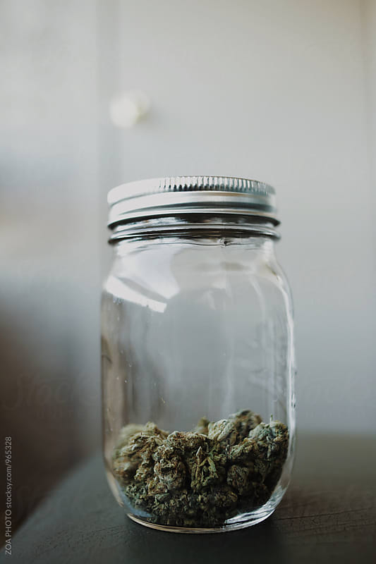 Medical Marijuana by ZOA PHOTO for Stocksy United