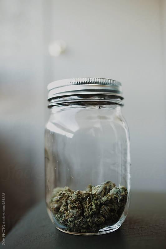 Medical Marijuana by ZOA PHOTO for Stocksy United