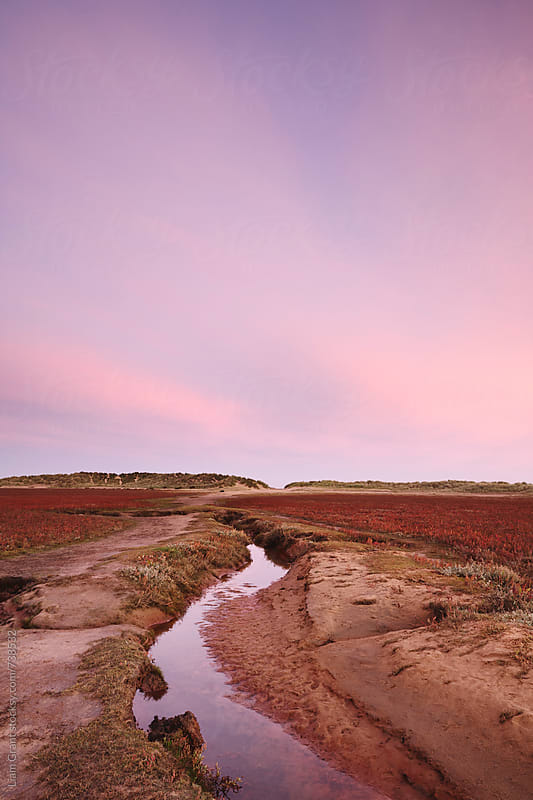 Pink sky at dawn. Holkham Beach, Norfolk, UK. by Liam Grant for Stocksy United