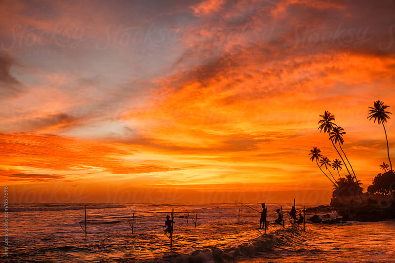Sunset stilt fishing in Sri Lanka by Jino Lee for Stocksy United
