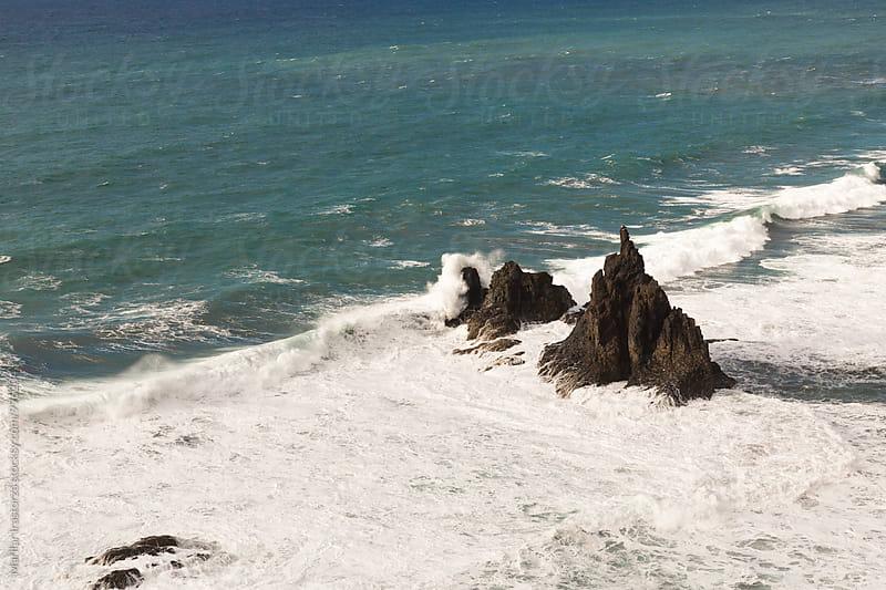 Sea Water by Marilar Irastorza for Stocksy United