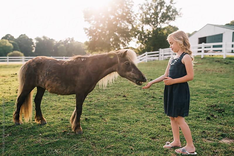 Farm Girl by Melanie DeFazio for Stocksy United