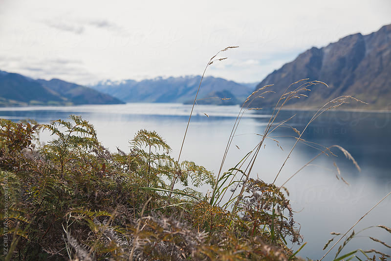 Beautiful Lake Hawea in New Zealand's south island in spring. by Robert Zaleski for Stocksy United