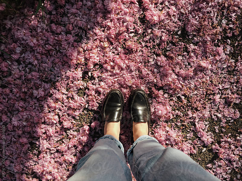 Two black loafers standing on a bed of pink flower petals by KATIE + JOE for Stocksy United