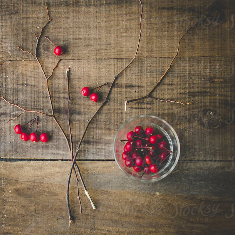 Berries and sticks on distressed wood by Lindsay Crandall for Stocksy United