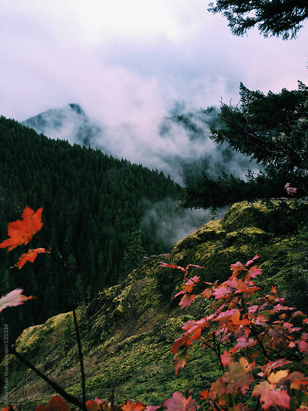 Foggy Oregon Fall Canyon by Kevin Russ for Stocksy United