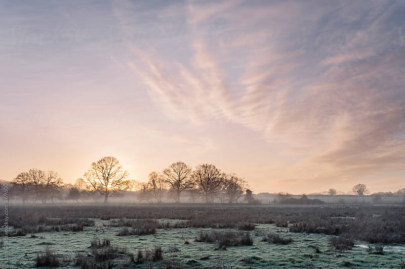 Sunrise and mist on a frosty morning. Norfolk, UK. by Liam Grant for Stocksy United
