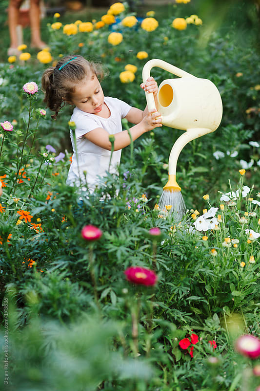 Child watering flower garden by Dejan Ristovski for Stocksy United
