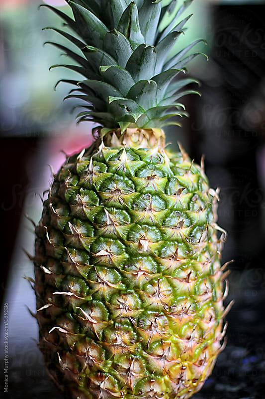Fresh organic Pineapple by Monica Murphy for Stocksy United