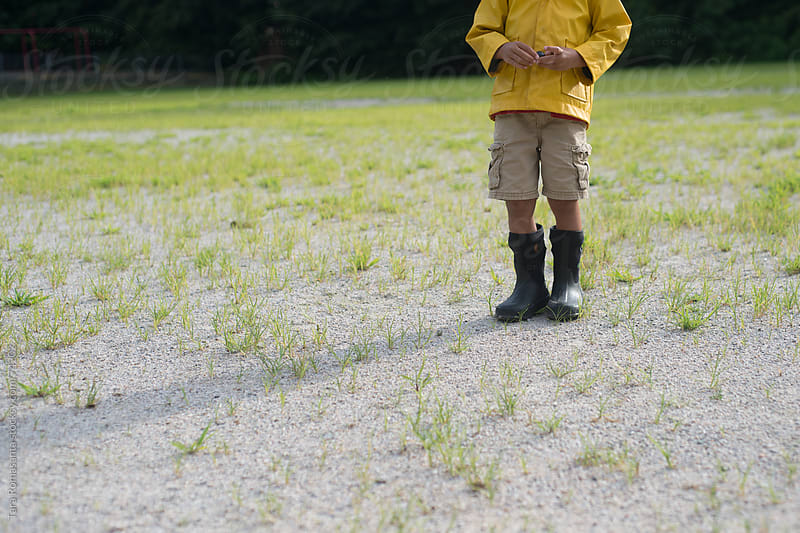 preschool boy stands in a field wearing a yellow rain jacket and boots by Tara Romasanta for Stocksy United