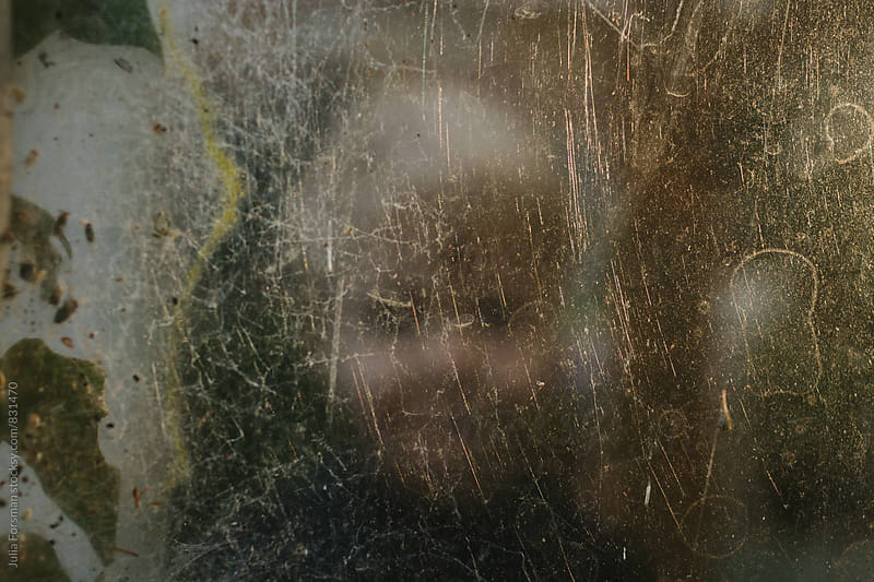 Out of focus child behind glass covered in plants and spiders webs and illuminated by the sun. by Julia Forsman for Stocksy United