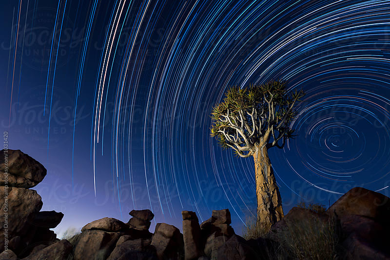 Quiver Tree and Startrails - Giants' Playground in Namibia by Fotografie Daniel Osterkamp for Stocksy United