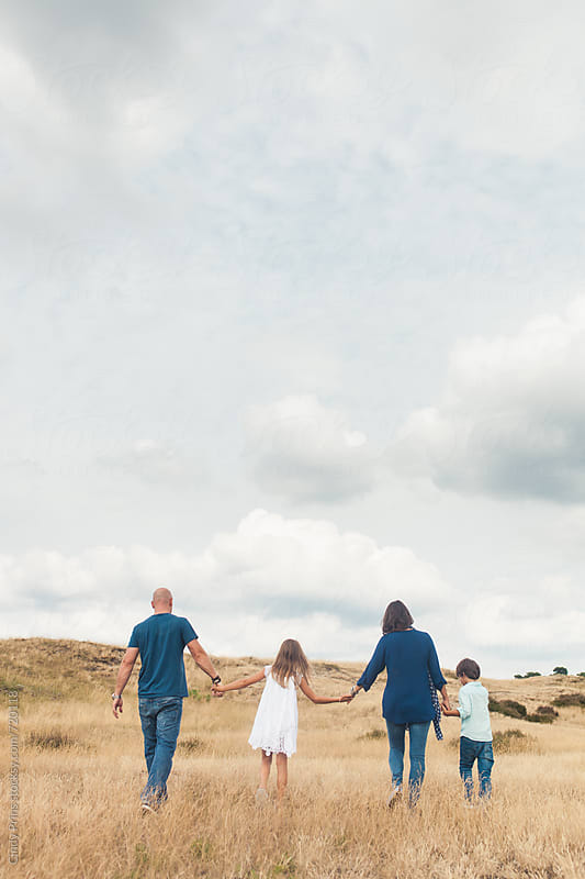 Back view of a family of four in a golden field with a big cloudy sky by Cindy Prins for Stocksy United