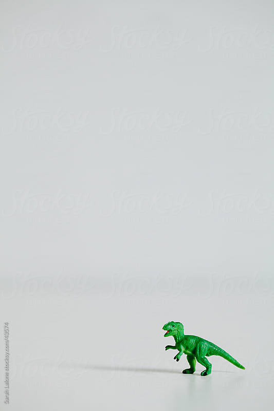 Mini green toy dinosaur. by Sarah Lalone for Stocksy United