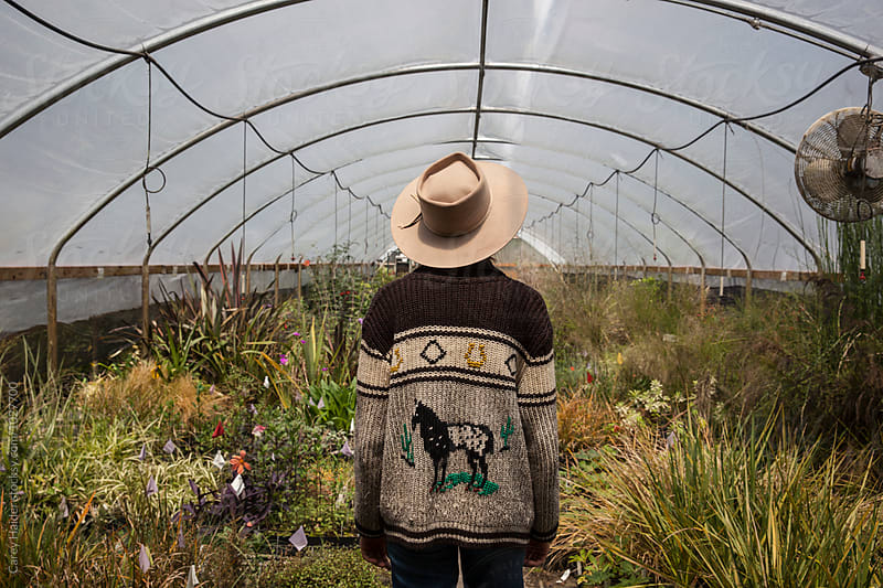 Farmer In A Greenhouse by Carey Haider for Stocksy United