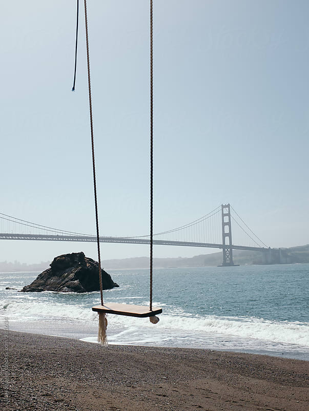 An empty tree swing on the beach. by Lucas Saugen for Stocksy United