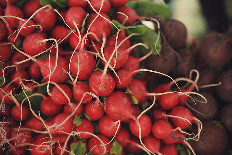 Radishes At the Market by ALICIA BOCK for Stocksy United