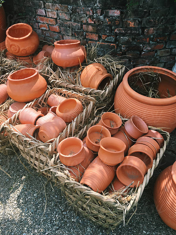 flower pot for sale by Bo Bo for Stocksy United