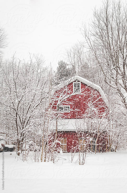 Abandoned red barn on a snowy day by Lindsay Crandall for Stocksy United