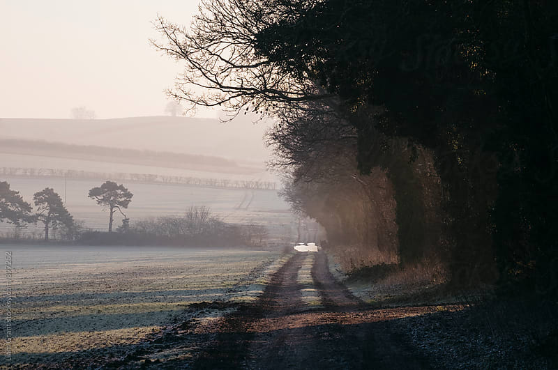 Rays of sunlight and frost along a remote country track. Norfolk, UK. by Liam Grant for Stocksy United