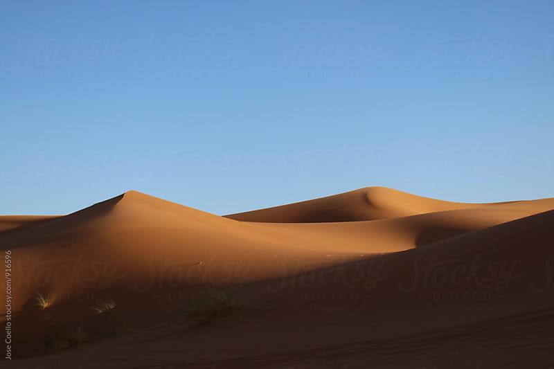 Sahara by Jose Coello for Stocksy United