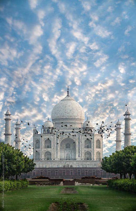 Taj Mahal in Agra by Leander Nardin for Stocksy United