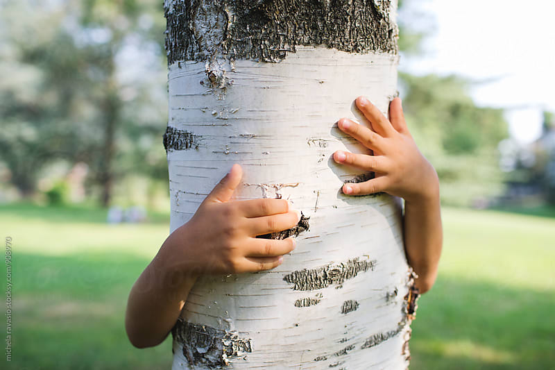 Child arms hugging a tree by michela ravasio for Stocksy United