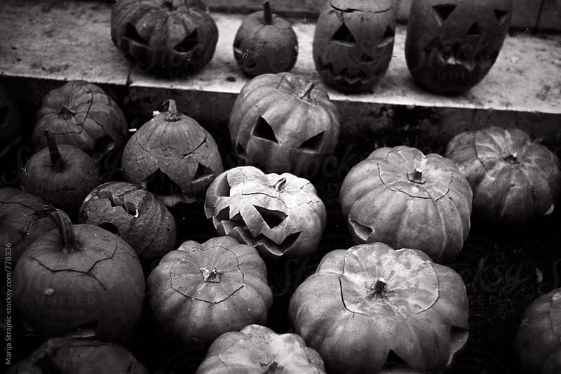 Halloween pumpkins on the ground by Marija Strajnic for Stocksy United