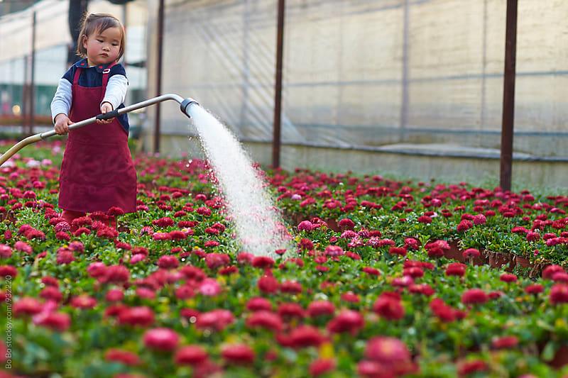 little asian girl watering flower by Bo Bo for Stocksy United
