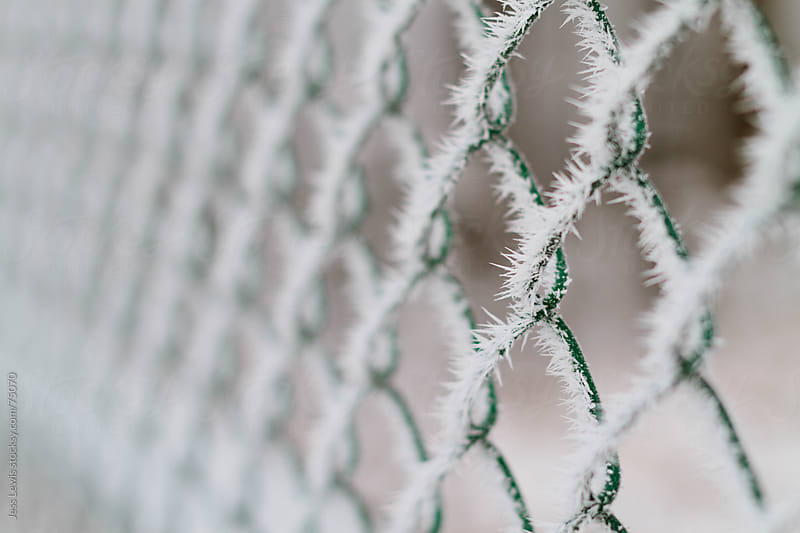 frost on a chain-link fence by Jess Lewis for Stocksy United